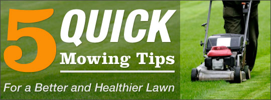 5 Quick Mowing Tips for a Better and Healthier Lawn