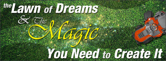 The Lawn of Dreams and the Magic You Need to Create It