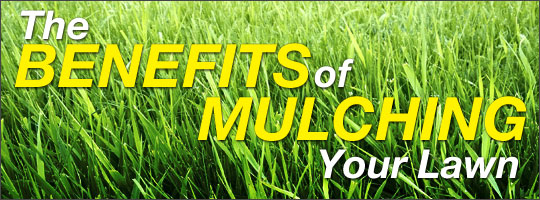 The Benefits of Mulching Your Lawn