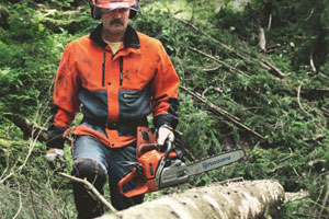 Cut and carve with chainsaws, pole saws, and power cutters from Mowers at Jacks.