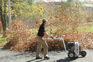 Walk Behind Leaf Blower