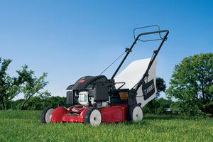 Lawn Mowers Manufacturers Companies in the United States