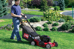 See Toro Walk Behind Mowers by clicking here